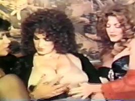 Classic Vintage Retro Diamondclip Western Fox Hotmovs Com